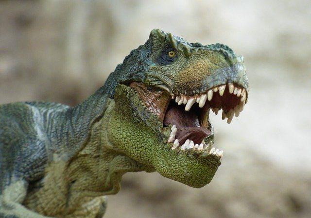 Dinosauri carnivori: l'elenco completo